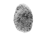 How_to_Leave_Your_Unique_Fingerprint_20-10-14_05-43-10.jpg